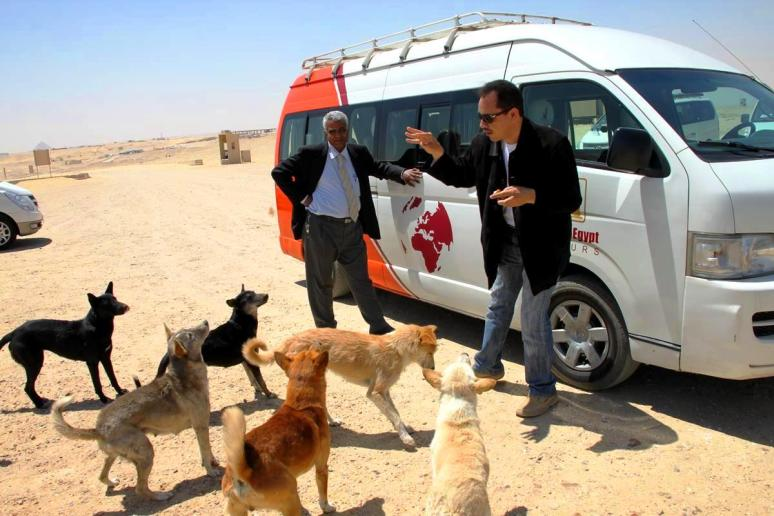 Ahmed feeding the stray dogs at Sakarra